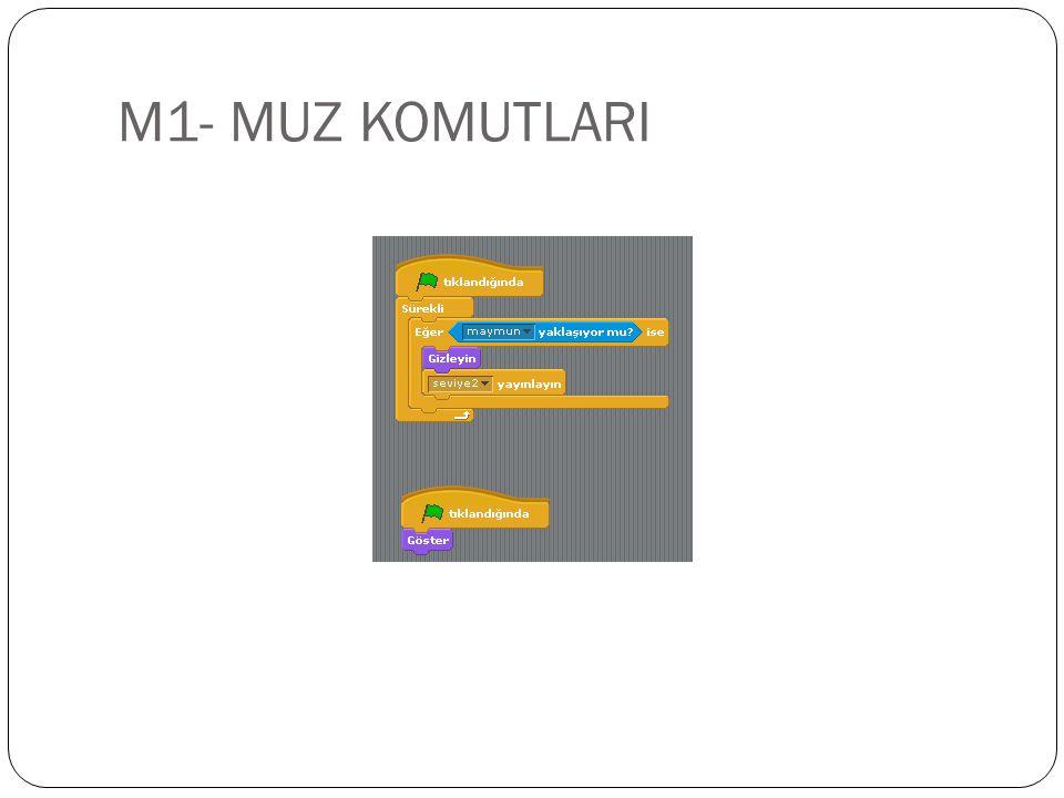 M1- MUZ KOMUTLARI