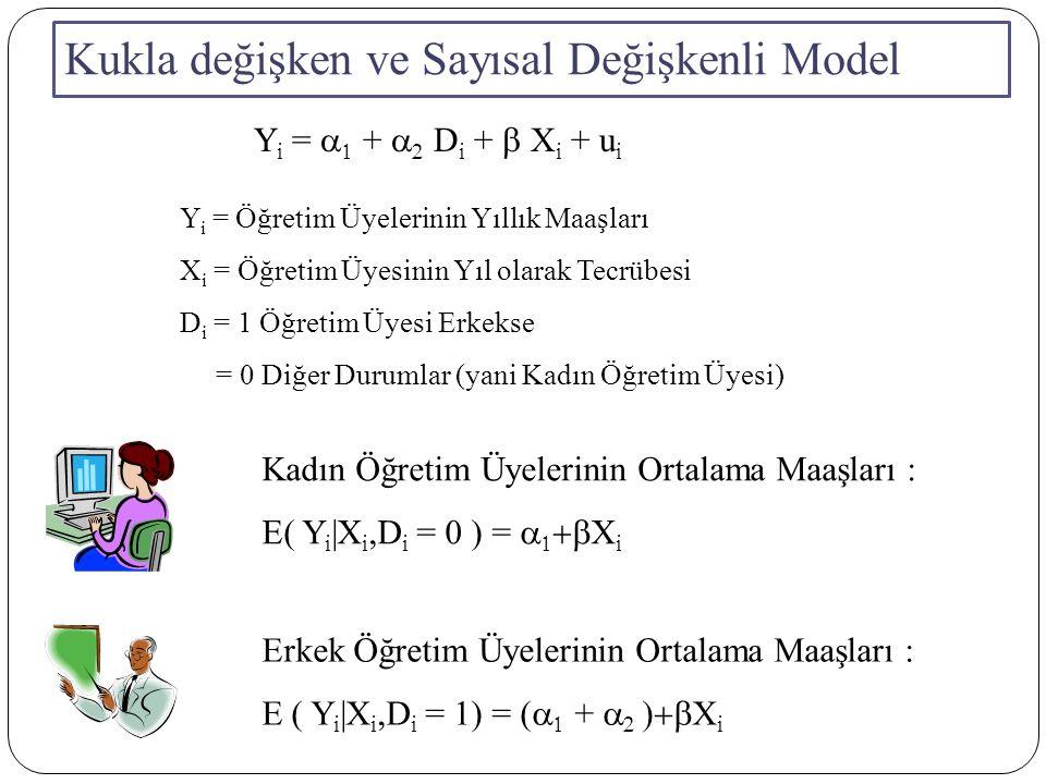 Kukla değişken ve Sayısal Değişkenli Model