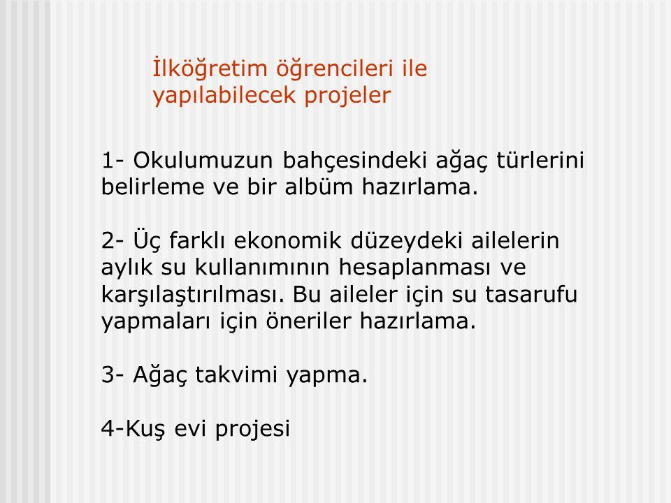 İlköğretim öğrencileri ile yapılabilecek projeler