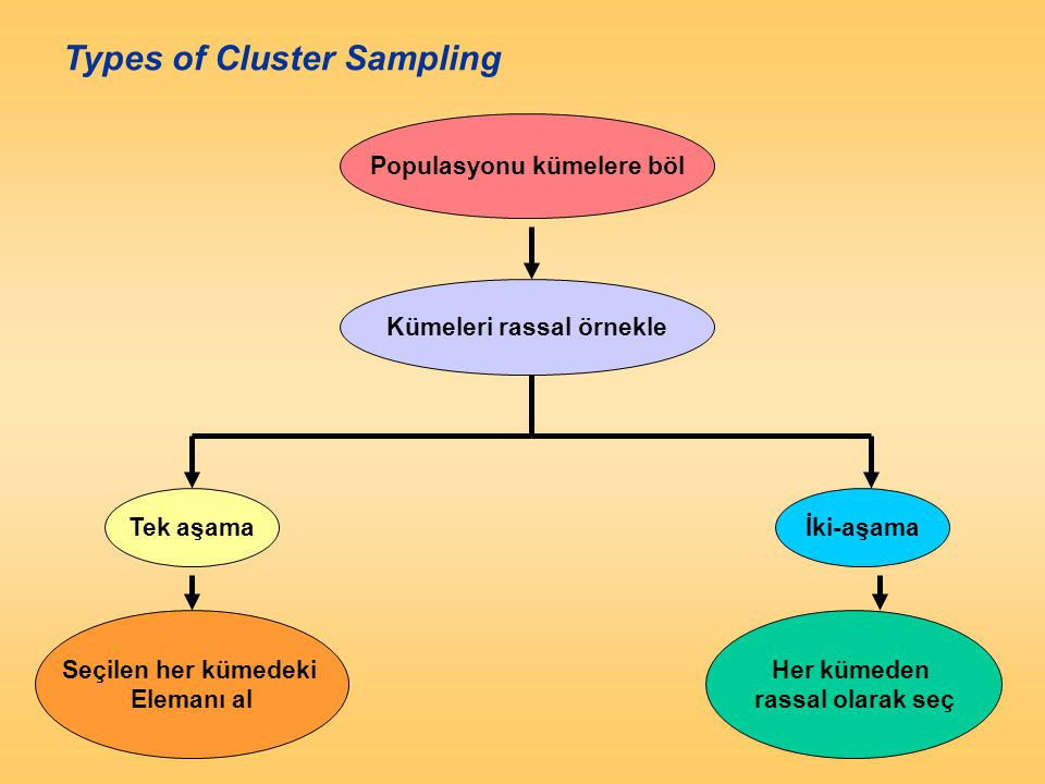 Figure 12.9 Types of Cluster Sampling