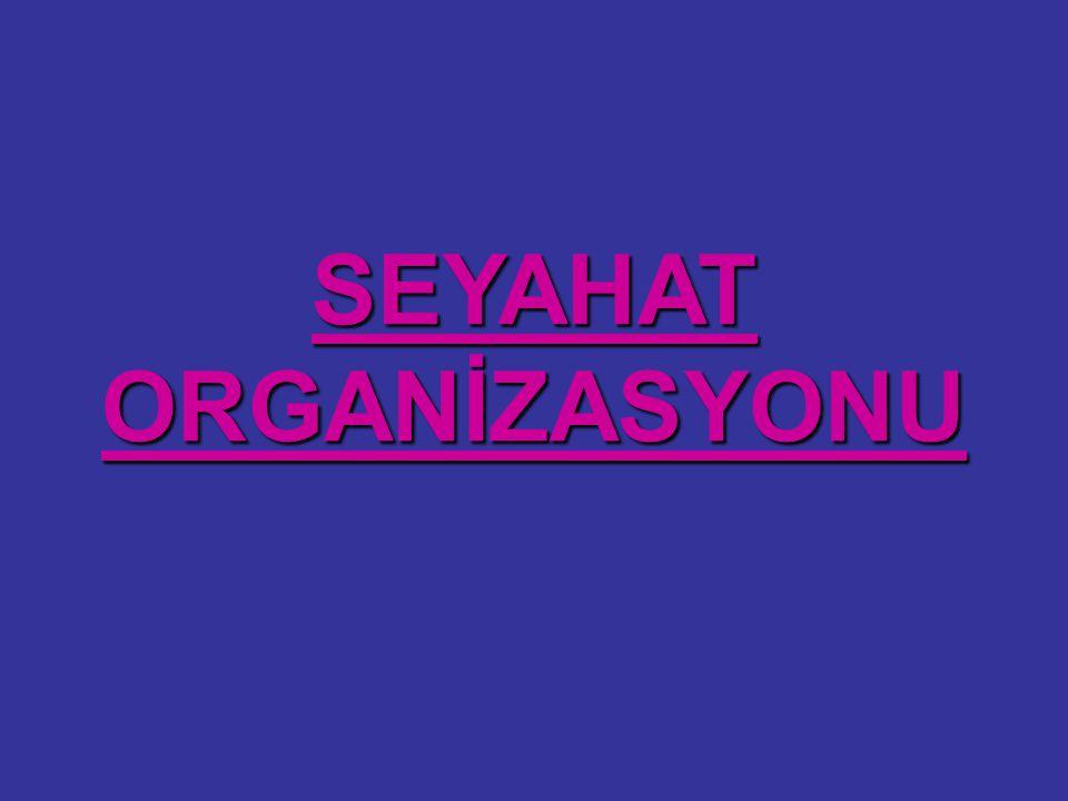SEYAHAT ORGANİZASYONU