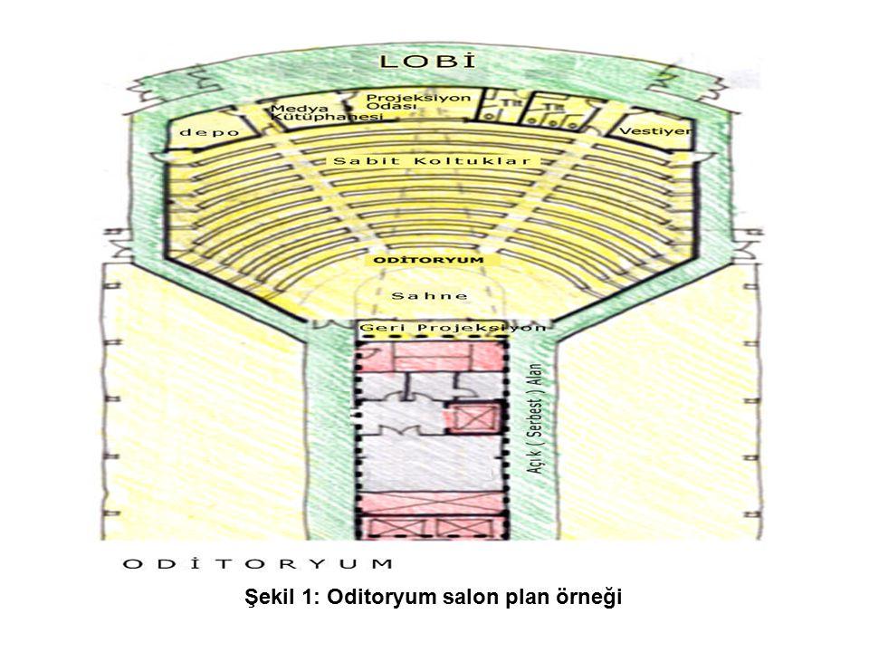 Şekil 1: Oditoryum salon plan örneği