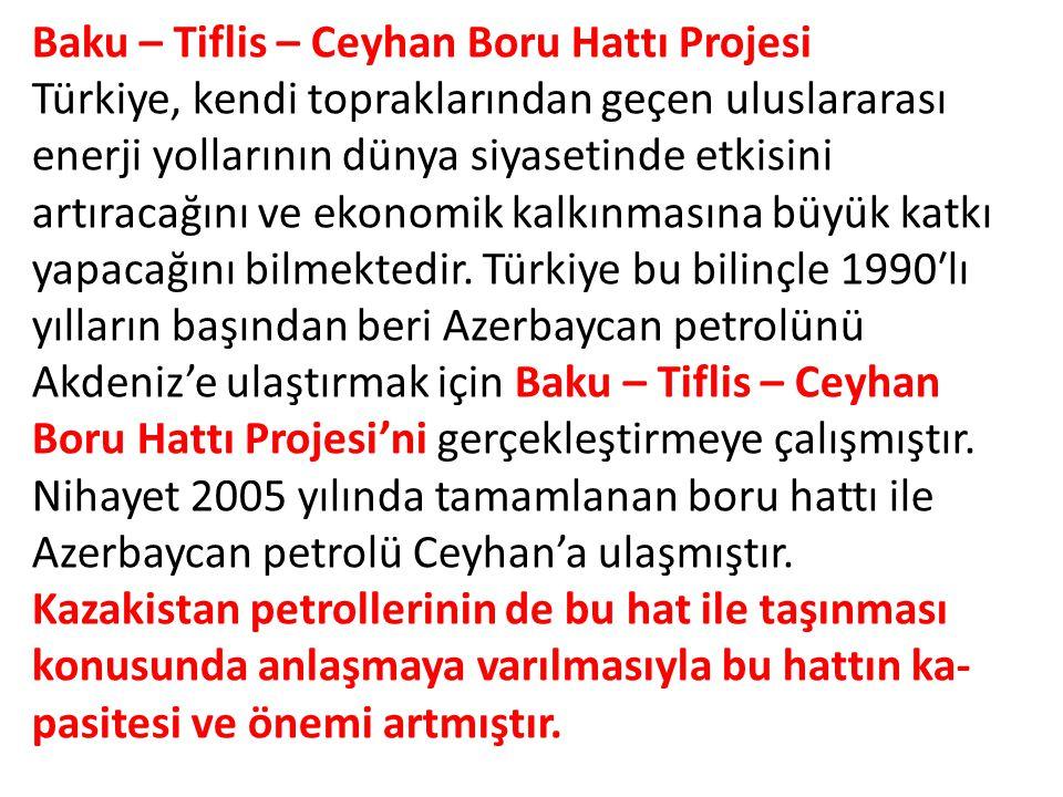 Baku – Tiflis – Ceyhan Boru Hattı Projesi