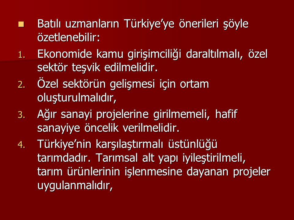 Batılı uzmanların Türkiye'ye önerileri şöyle özetlenebilir:
