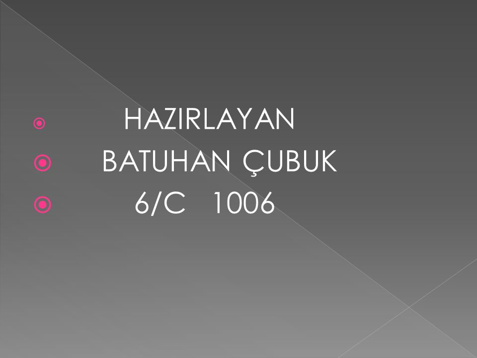 HAZIRLAYAN BATUHAN ÇUBUK 6/C 1006