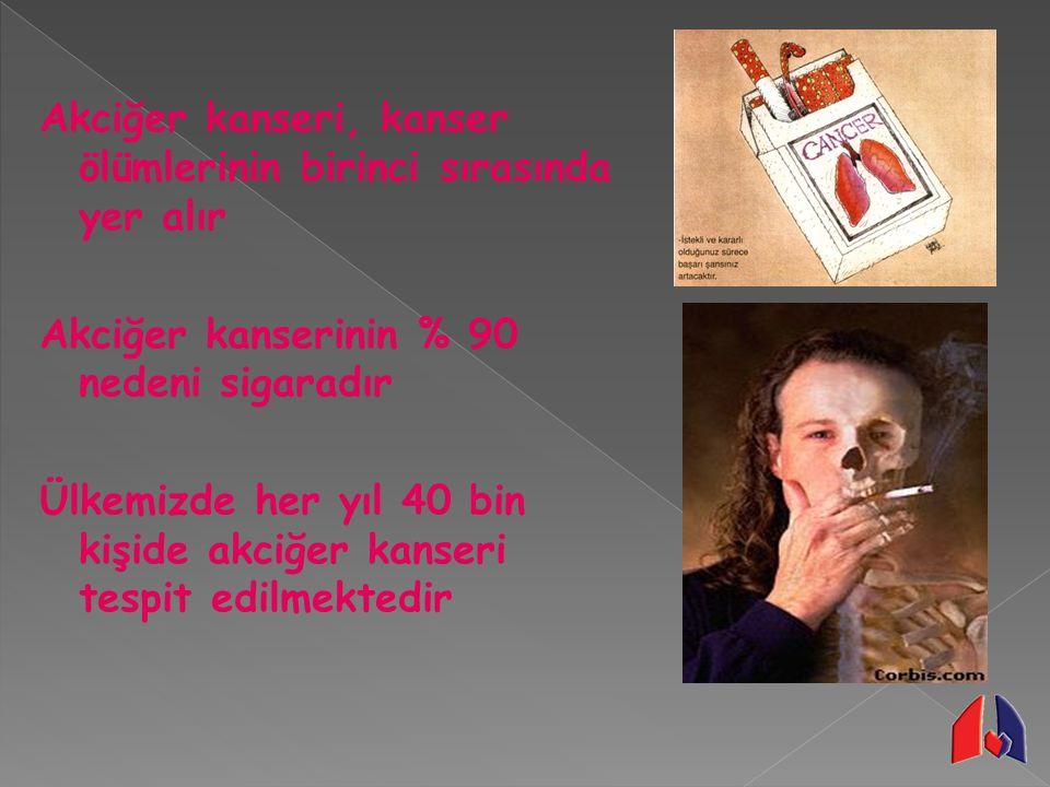 Akciğer kanseri, kanser ölümlerinin birinci sırasında yer alır