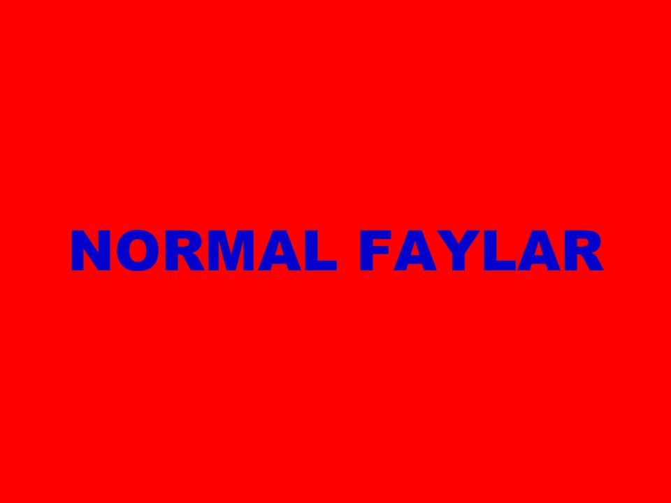 NORMAL FAYLAR