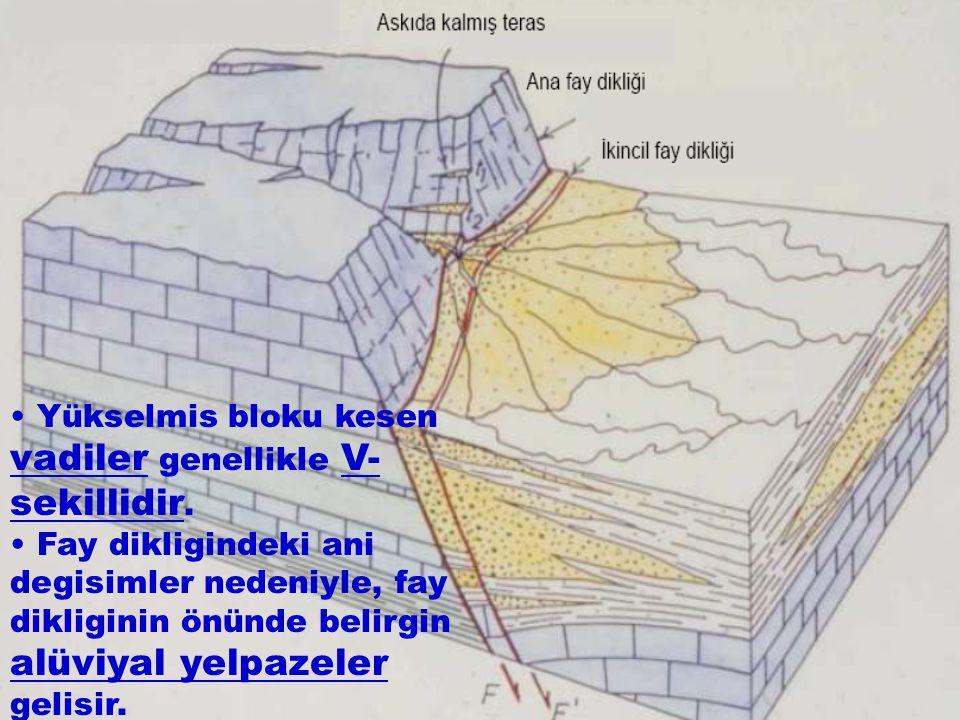 • Yükselmis bloku kesen vadiler genellikle V-sekillidir.