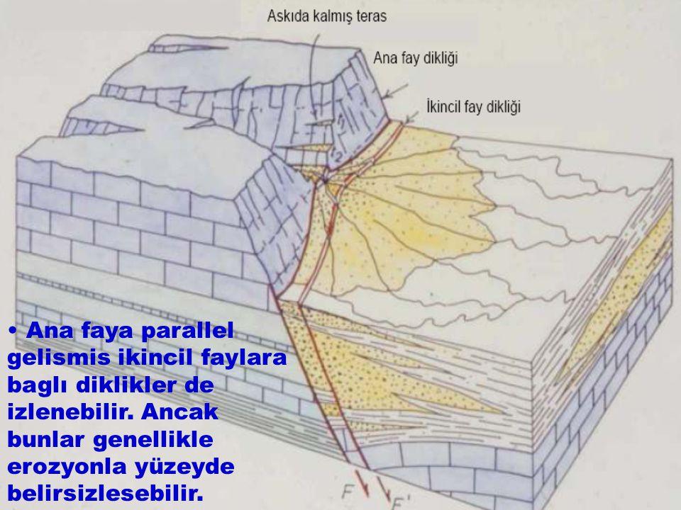 • Ana faya parallel gelismis ikincil faylara baglı diklikler de izlenebilir.