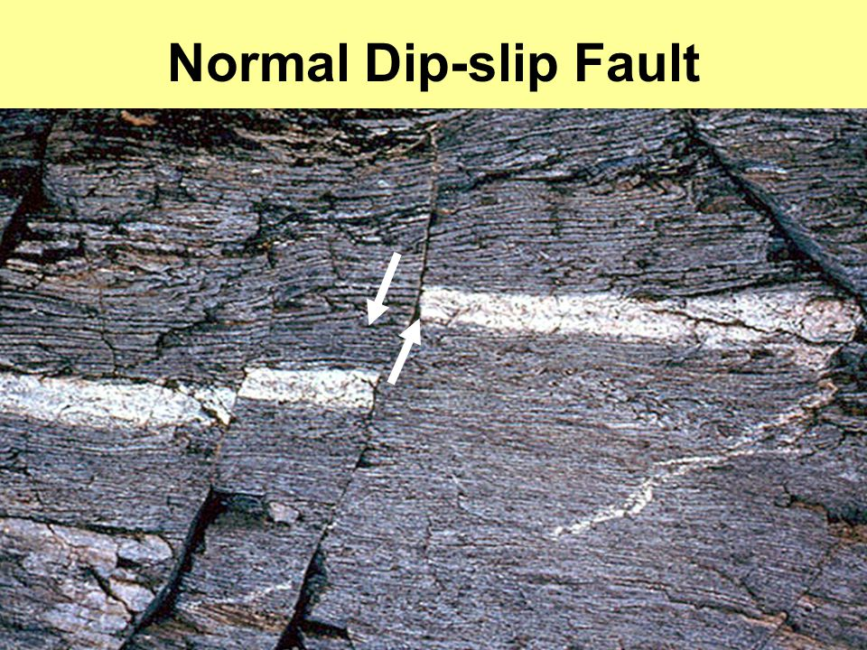 Normal Dip-slip Fault