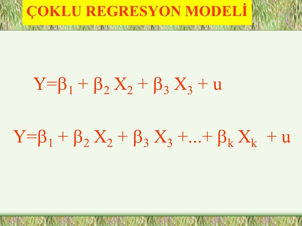 ÇOKLU REGRESYON MODELİ