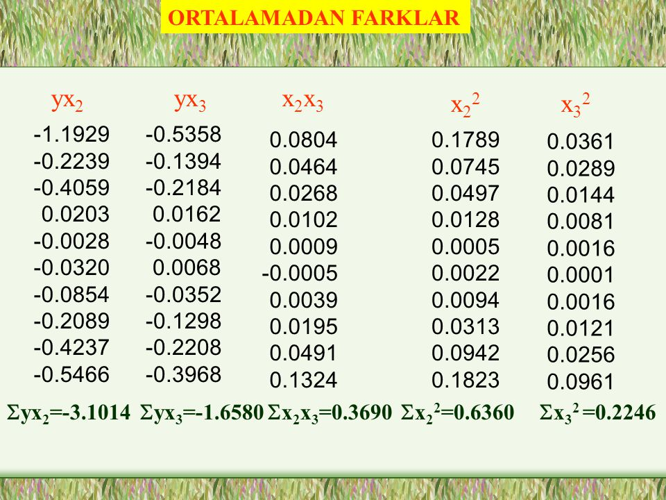 yx2 yx3 x2x3 x22 x32 ORTALAMADAN FARKLAR -1.1929 -0.2239 -0.4059