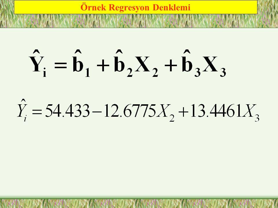 Örnek Regresyon Denklemi