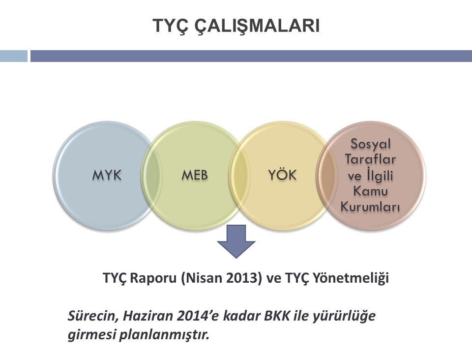 TYÇ Raporu (Nisan 2013) ve TYÇ Yönetmeliği