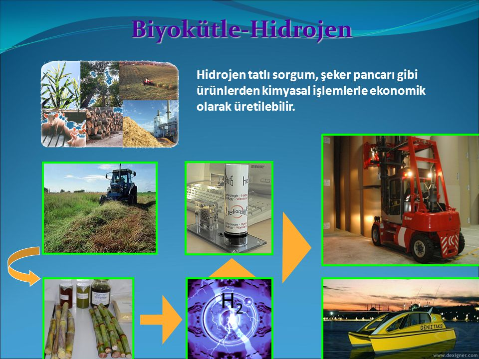 Biyokütle-Hidrojen Hidrojen tatlı sorgum, şeker pancarı gibi ürünlerden kimyasal işlemlerle ekonomik olarak üretilebilir.
