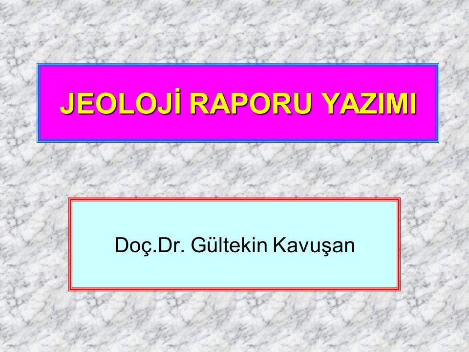 Doç.Dr. Gültekin Kavuşan