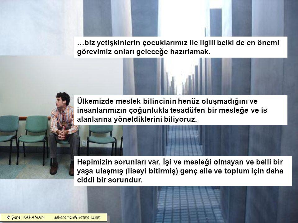  Şenel KARAMAN sskaraman@hotmail.com