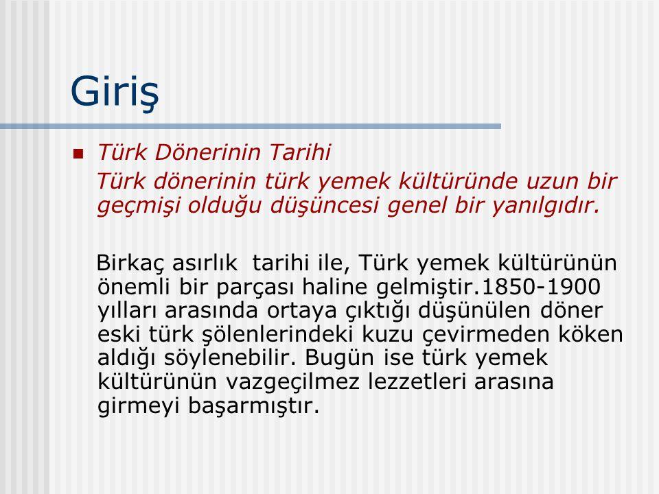 Giriş Türk Dönerinin Tarihi