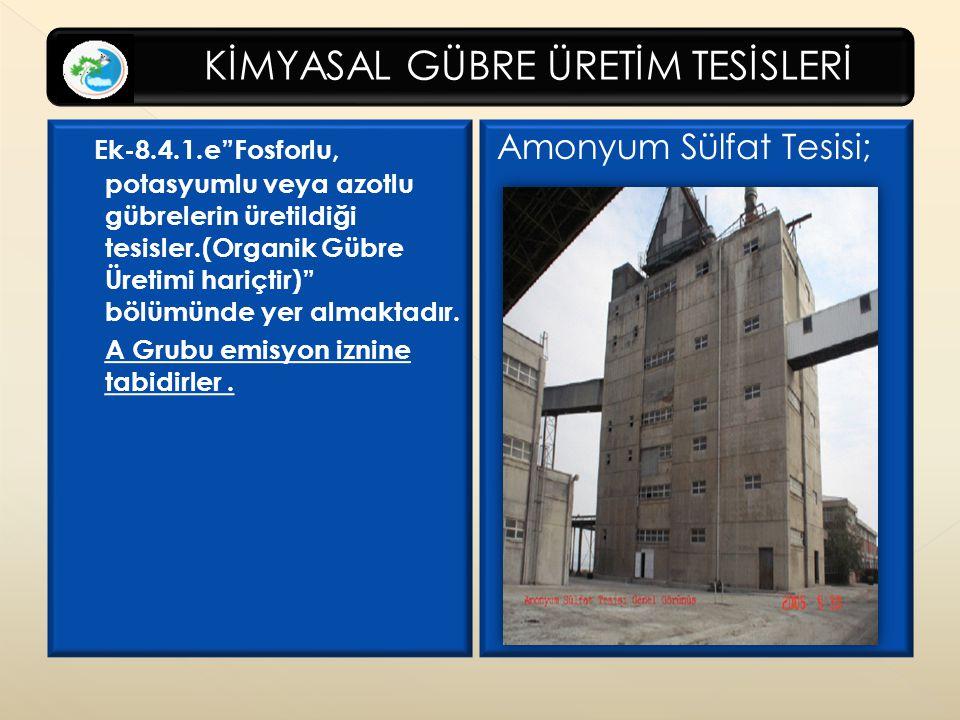 Amonyum Sülfat Tesisi;