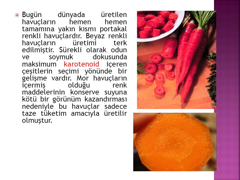 Bugün dünyada üretilen havuçların hemen hemen tamamına yakın kısmı portakal renkli havuçlardır.