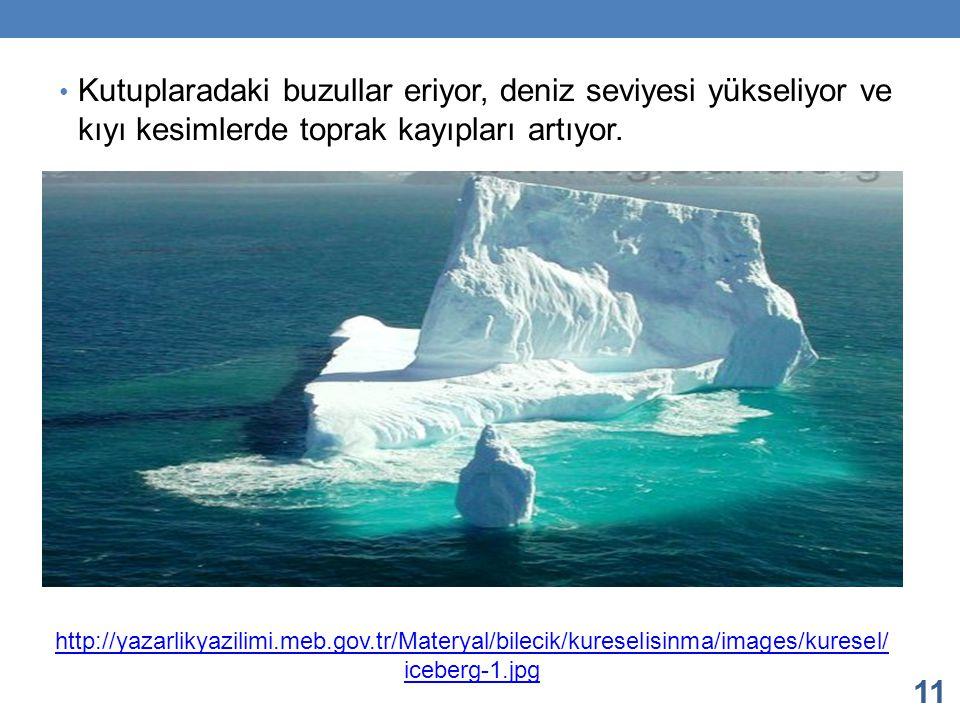 Kutuplaradaki buzullar eriyor, deniz seviyesi yükseliyor ve kıyı kesimlerde toprak kayıpları artıyor.