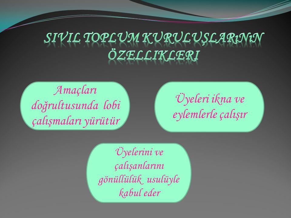 Sivil toplum kuruluşlarının özellikleri