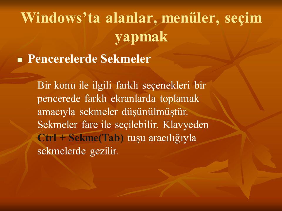 Windows'ta alanlar, menüler, seçim yapmak