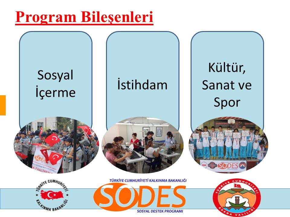 Program Bileşenleri Sosyal İçerme İstihdam Kültür, Sanat ve Spor