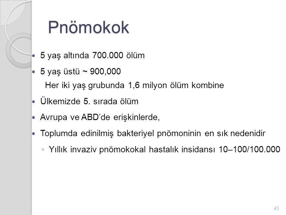 Pnömokok 5 yaş altında 700.000 ölüm