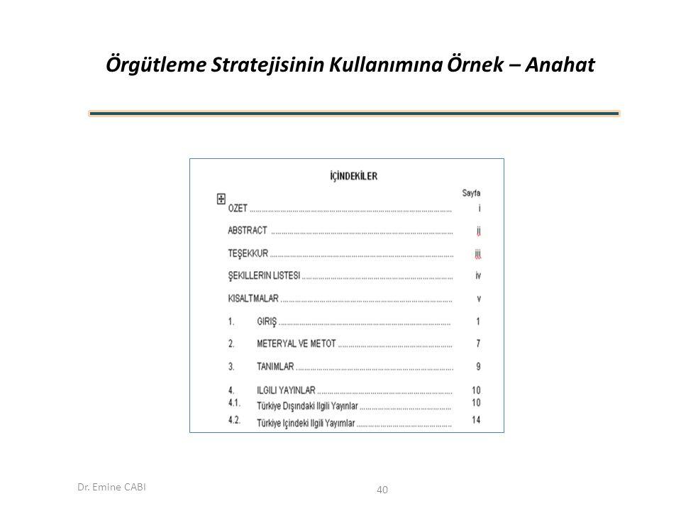 Örgütleme Stratejisinin Kullanımına Örnek – Anahat