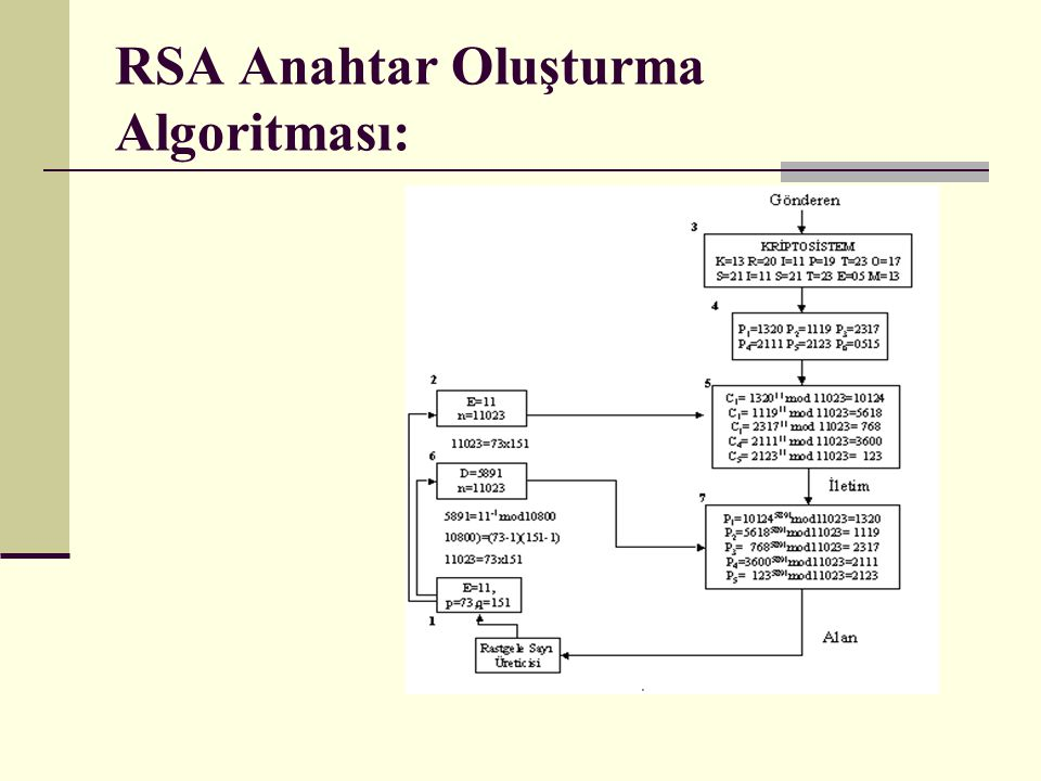 RSA Anahtar Oluşturma Algoritması: