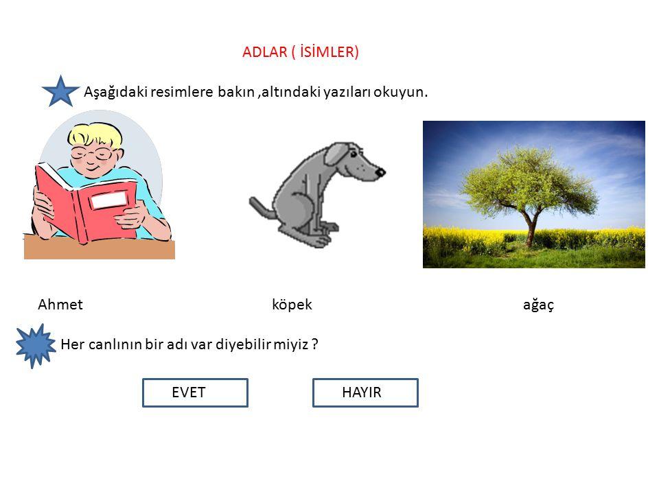 ADLAR ( İSİMLER) Aşağıdaki resimlere bakın ,altındaki yazıları okuyun.