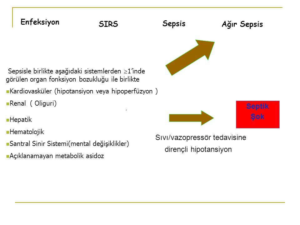 Sıvı/vazopressör tedavisine