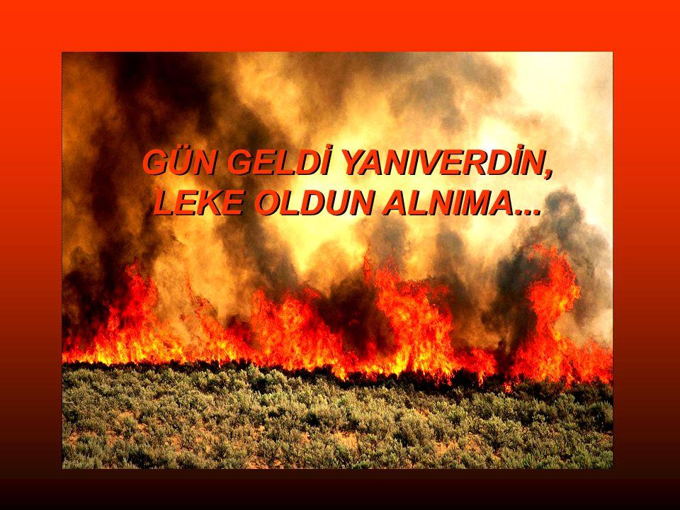 GÜN GELDİ YANIVERDİN, LEKE OLDUN ALNIMA...