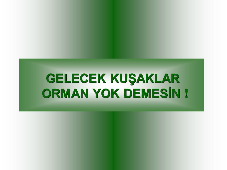 GELECEK KUŞAKLAR ORMAN YOK DEMESİN !