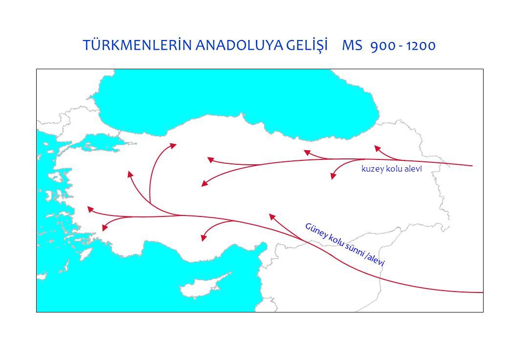 TÜRKMENLERİN ANADOLUYA GELİŞİ MS 900 - 1200