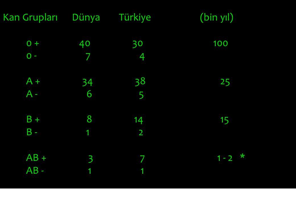Kan Grupları Dünya Türkiye (bin yıl)