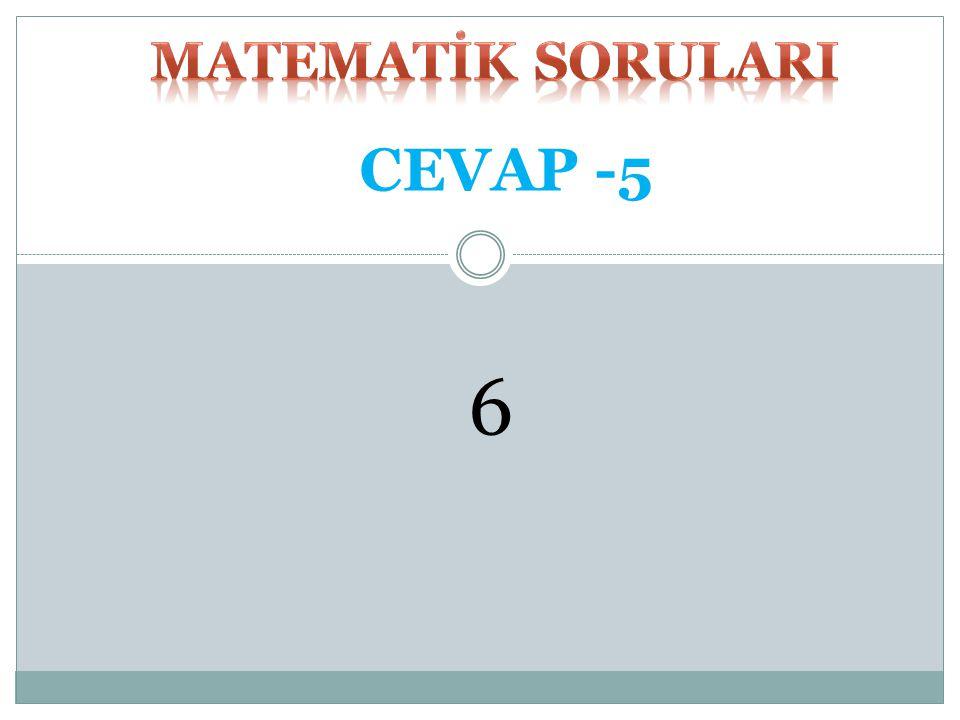 MATEMATİK SORULARI CEVAP -5 6