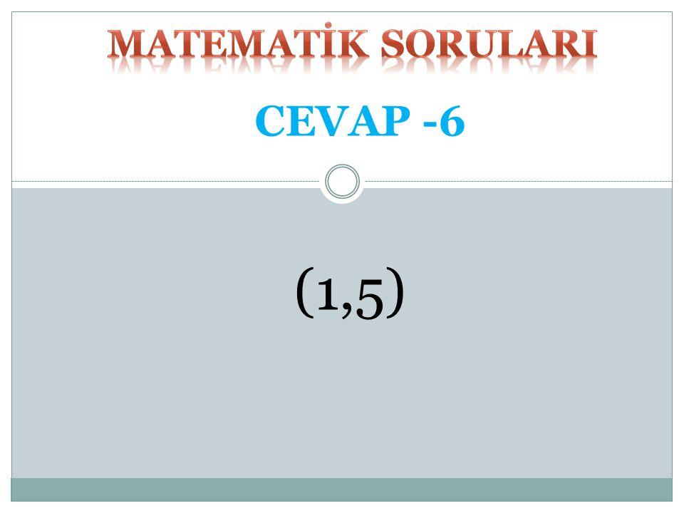 MATEMATİK SORULARI CEVAP -6 (1,5)