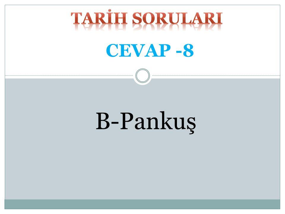TARİH SORULARI CEVAP -8 B-Pankuş