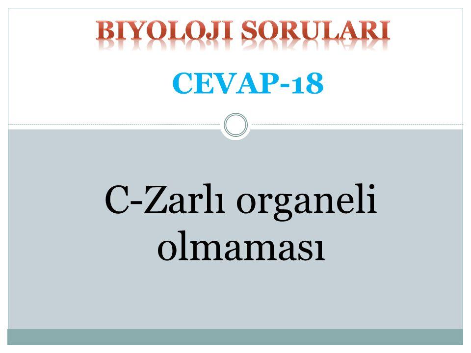 C-Zarlı organeli olmaması