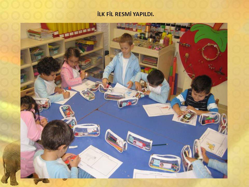 İLK FİL RESMİ YAPILDI.
