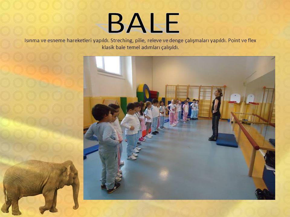 BALE Isınma ve esneme hareketleri yapıldı. Streching, pilie, releve ve denge çalışmaları yapıldı.