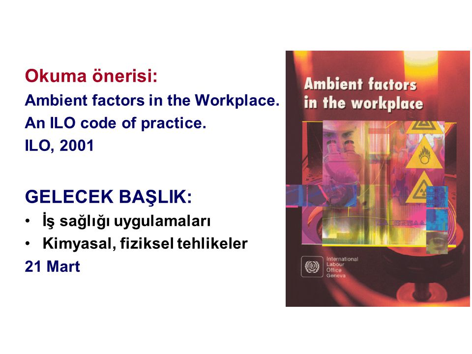 Okuma önerisi: GELECEK BAŞLIK: Ambient factors in the Workplace.