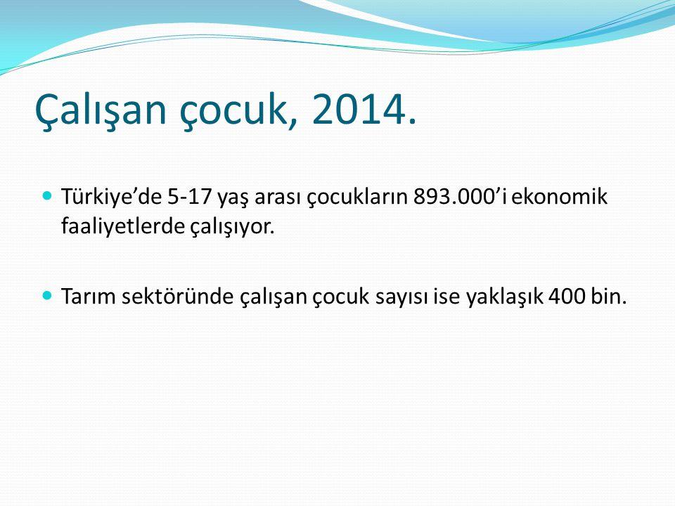 Çalışan çocuk, 2014. Türkiye'de 5-17 yaş arası çocukların 893.000'i ekonomik faaliyetlerde çalışıyor.