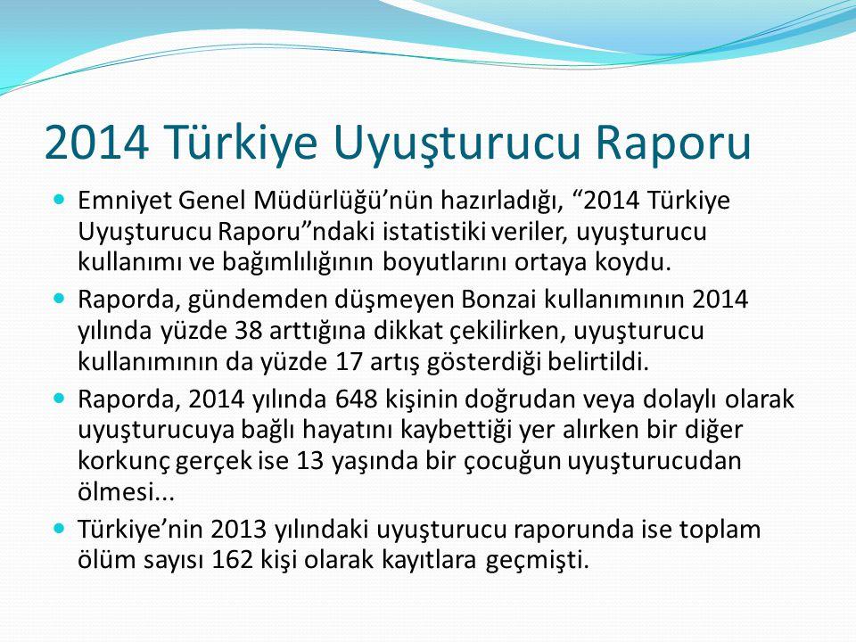 2014 Türkiye Uyuşturucu Raporu