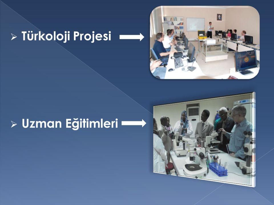 Türkoloji Projesi Uzman Eğitimleri