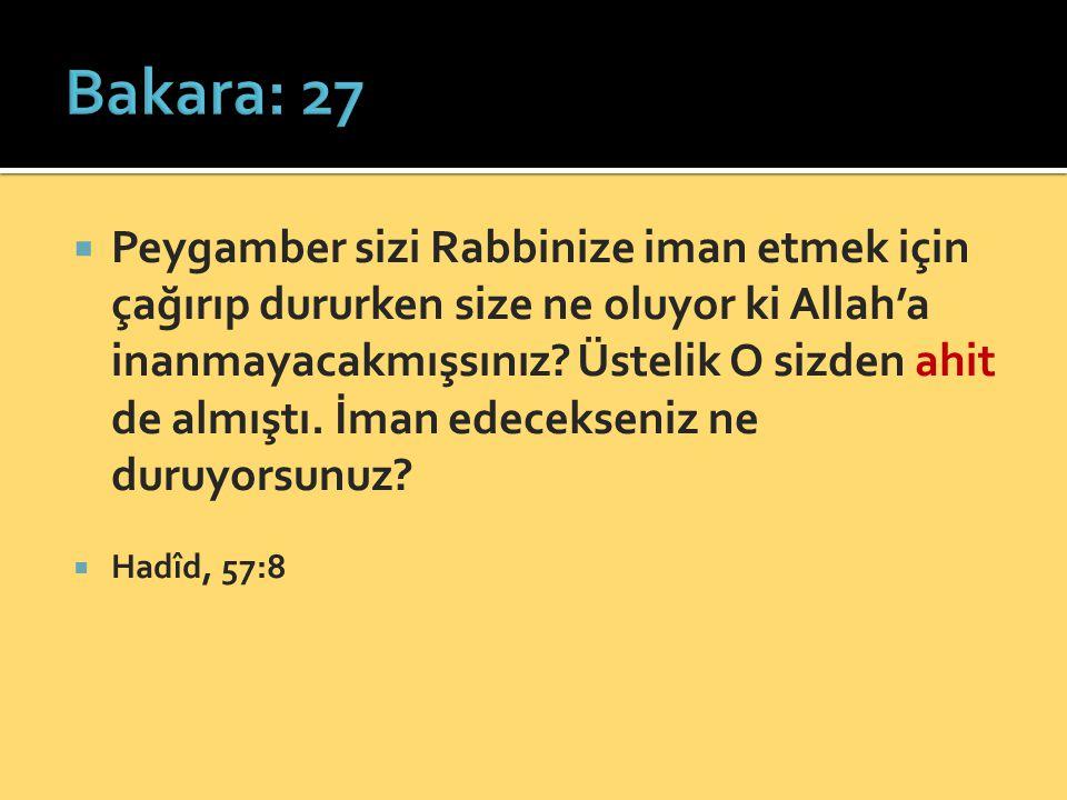 Bakara: 27