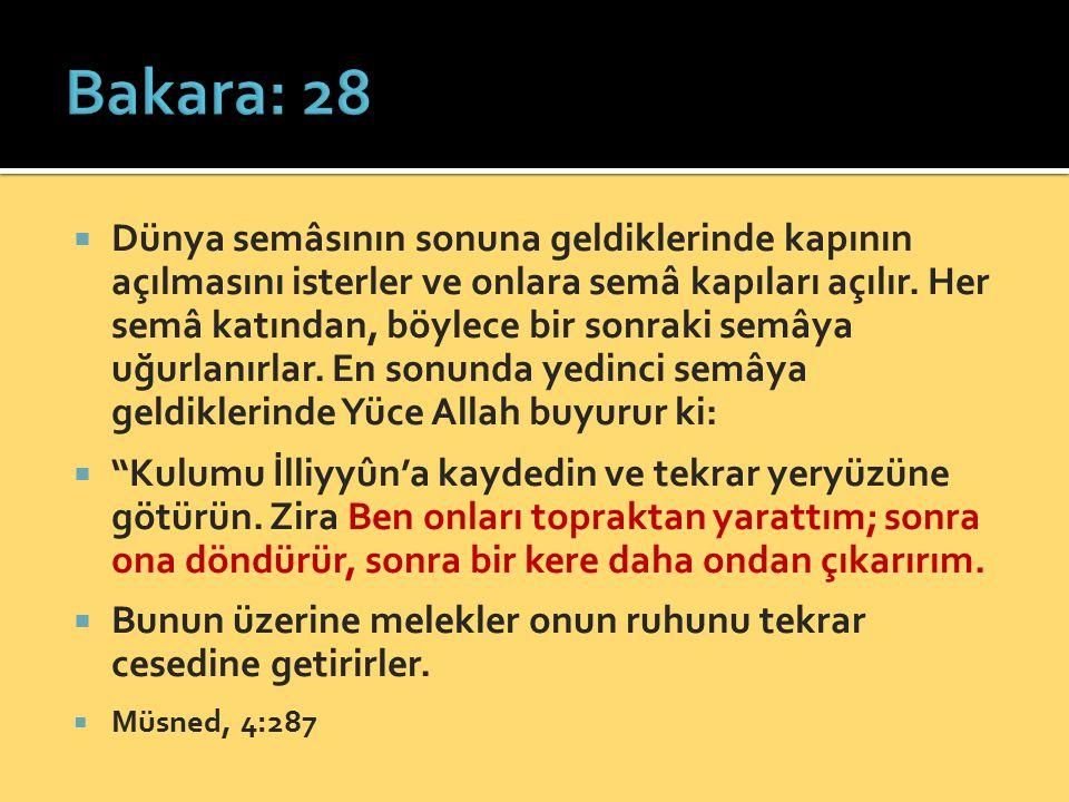Bakara: 28