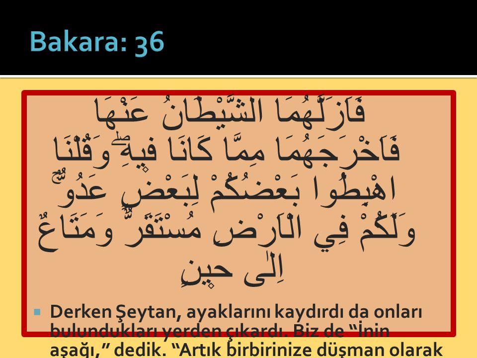 Bakara: 36